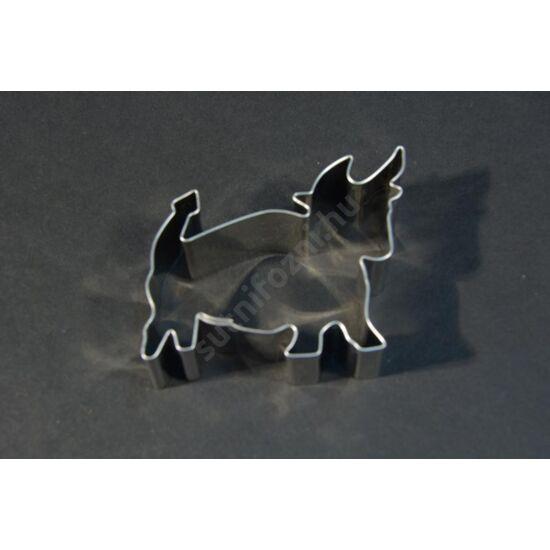 bika csillagjegy kisúró